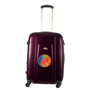 racini-3512-hard-case-luggage-24-purple